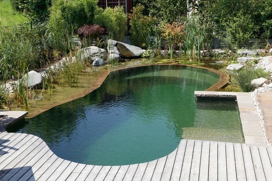 Cuanto cuesta hacer una piscina de obra best cuanto for Cuanto cuesta hacer una alberca en casa