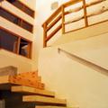 Casa Serrano. Interior, Escala