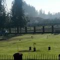 Jardines en Chicureo