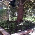 paisajisno en jardin con durmientes y regadio automatico