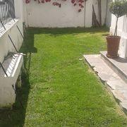 Venta de Plantas Ornamentales, Frutales, Flores y Trabajos de Jardinería en General