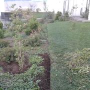 Empresas Jardineros - Vida Y Jardin