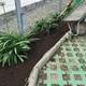 Mejoramiento de suelo en jardineras