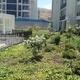 Empresas construcción Región Metropolitana - Santiago - Vida Y Jardin