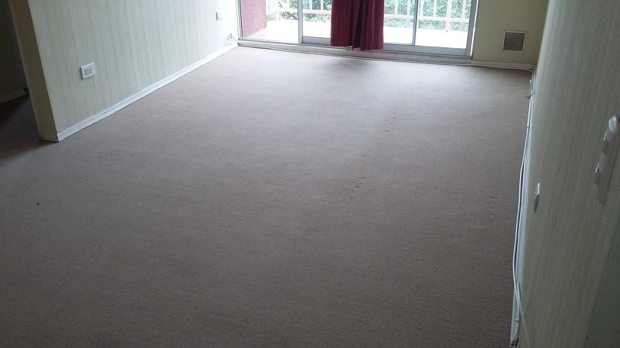 Lavado de alfombra en departamento.