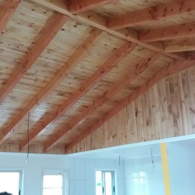 Interiores living comedor embigado y maderas a la vista