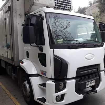 Camion Ford año 2016