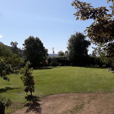 Jardin con Mantención(1)