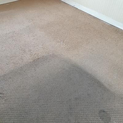 Limpieza alfombras muro a muro