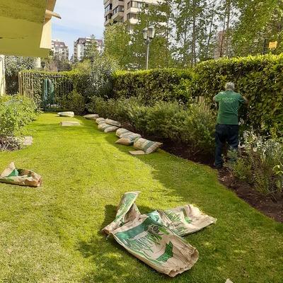 Mejoramiento de jardin