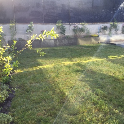 Jardín Chamisero