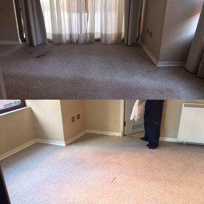 lavado de alfombra en seco