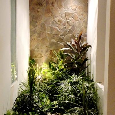 Diseño Jardin interior