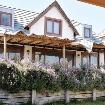 (ANTES) Remodelación de terraza y techo