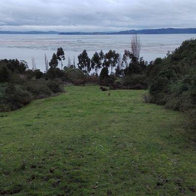Levantamiento sector Quiao, Chiloe