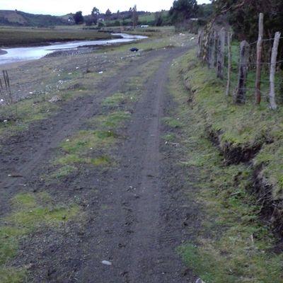 Camino Acceso a Loteo en Matao, Chiloe