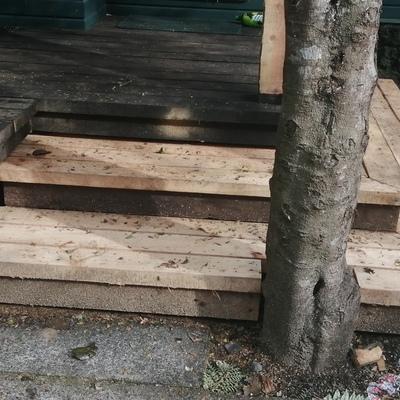 Reconstrucción de Terraza en madera nativa.