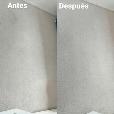 Resultado de Lavado de Alfombra Muro a Muro