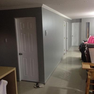 Reparación y pintado  casa