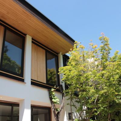 Fachada interior Casa las Peñas