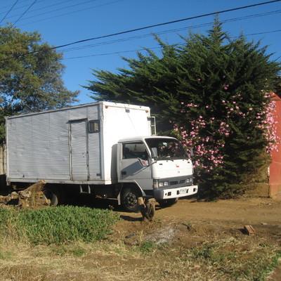 Mudanza en sector rural de la 6ª región