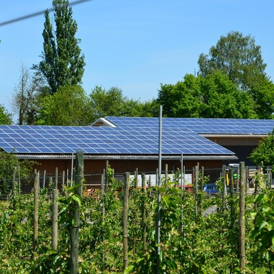 Fotovoltaico on-grid agroindustrial