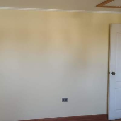 Suministro y aplicación de pintura