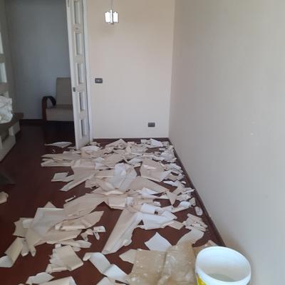 Sacado de papel y reparacion de.muro