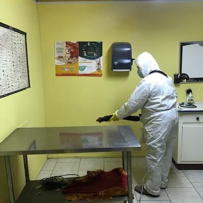Desinfección clínica veterinaria
