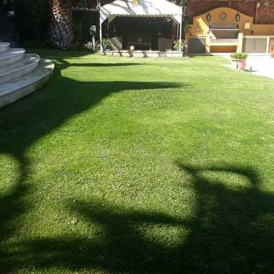 Trabajos de mantención de jardines - Embajada de Turquía