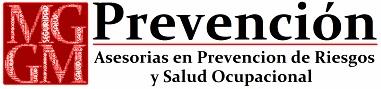 Mg Prevención Asesorías Limitada