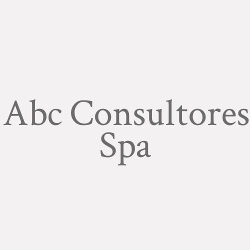 Abc Consultores Spa
