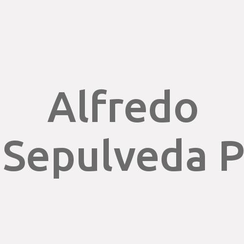 Alfredo Sepulveda P.