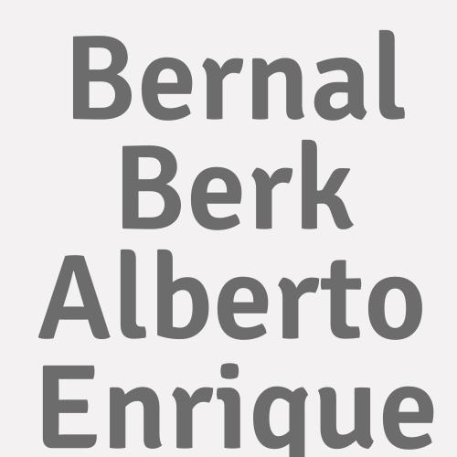 Bernal Berk Alberto Enrique