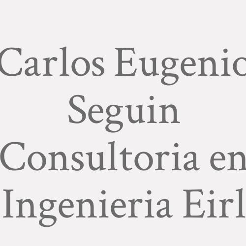 Carlos Eugenio Seguin Consultoria en Ingenieria Eirl