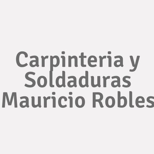 Carpinteria y Soldaduras Mauricio Robles