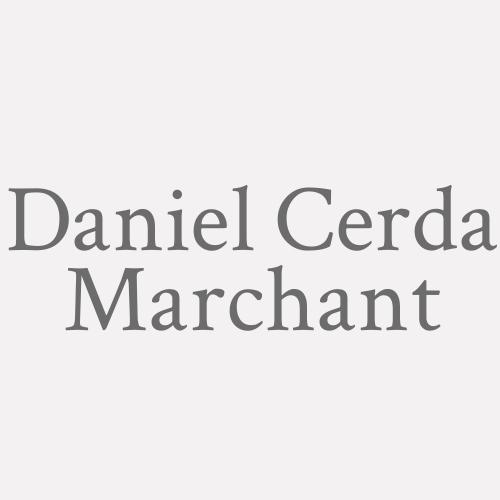 Daniel Cerda Marchant