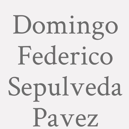Domingo Federico Sepulveda Pavez