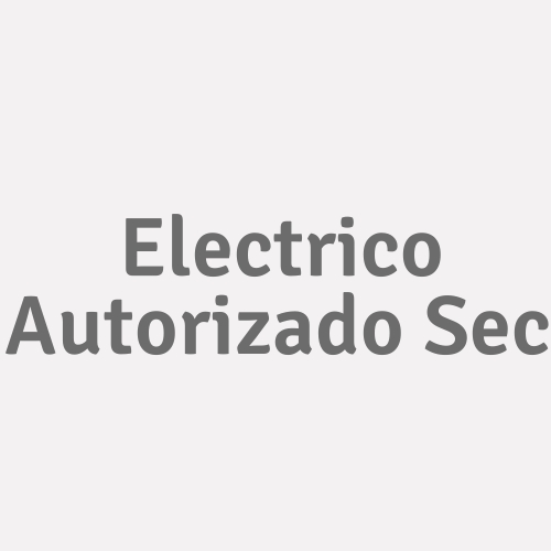 Electrico Autorizado Sec