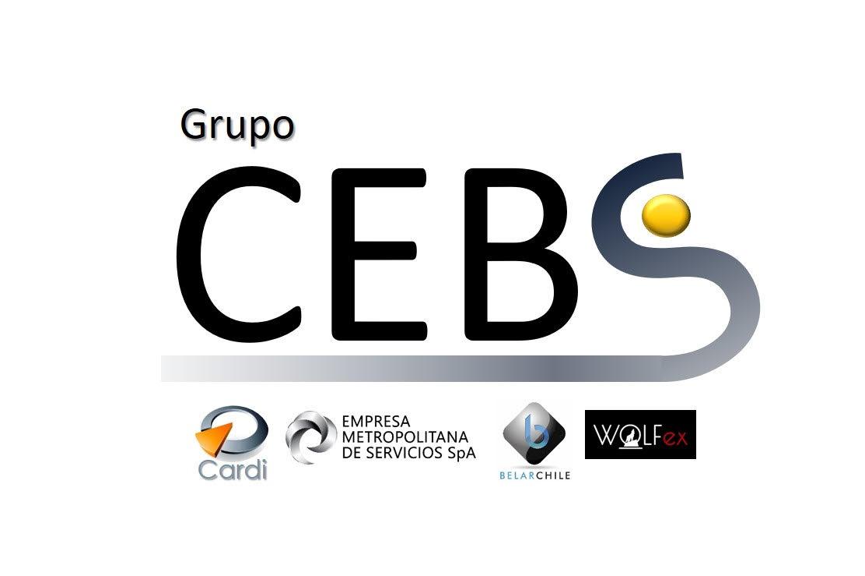 Grupo Cebs