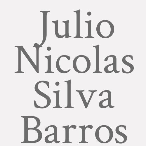 Julio Nicolas Silva Barros