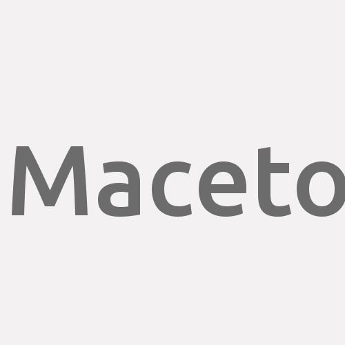 Maceto