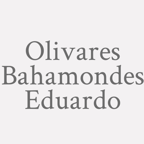 Olivares Bahamondes Eduardo
