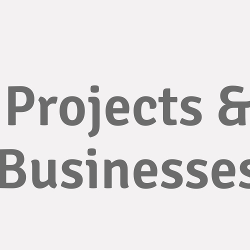 Projects & Businesses