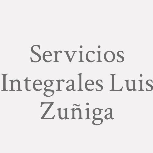 Servicios Integrales Luis Zuñiga