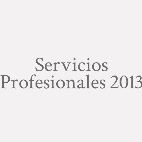 Servicios Profesionales 2013
