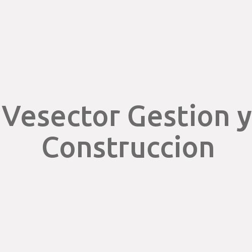 Vesector Gestion Y Construccion