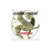 Sociedad Comercial Danesh