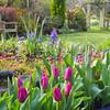 Jardines Verde/renacer