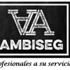 Ambiseg